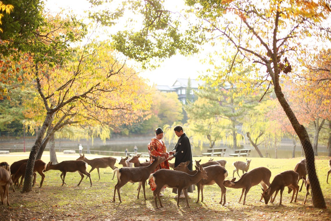 A couple posing with deer at nara