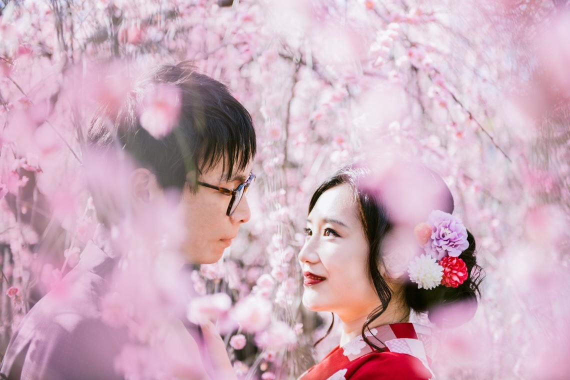 Couple and Family Photoshoot under Beautiful Cherry Blossoms