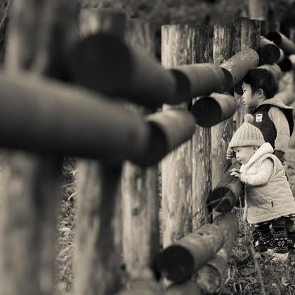 エミリィの七五三写真 出張撮影