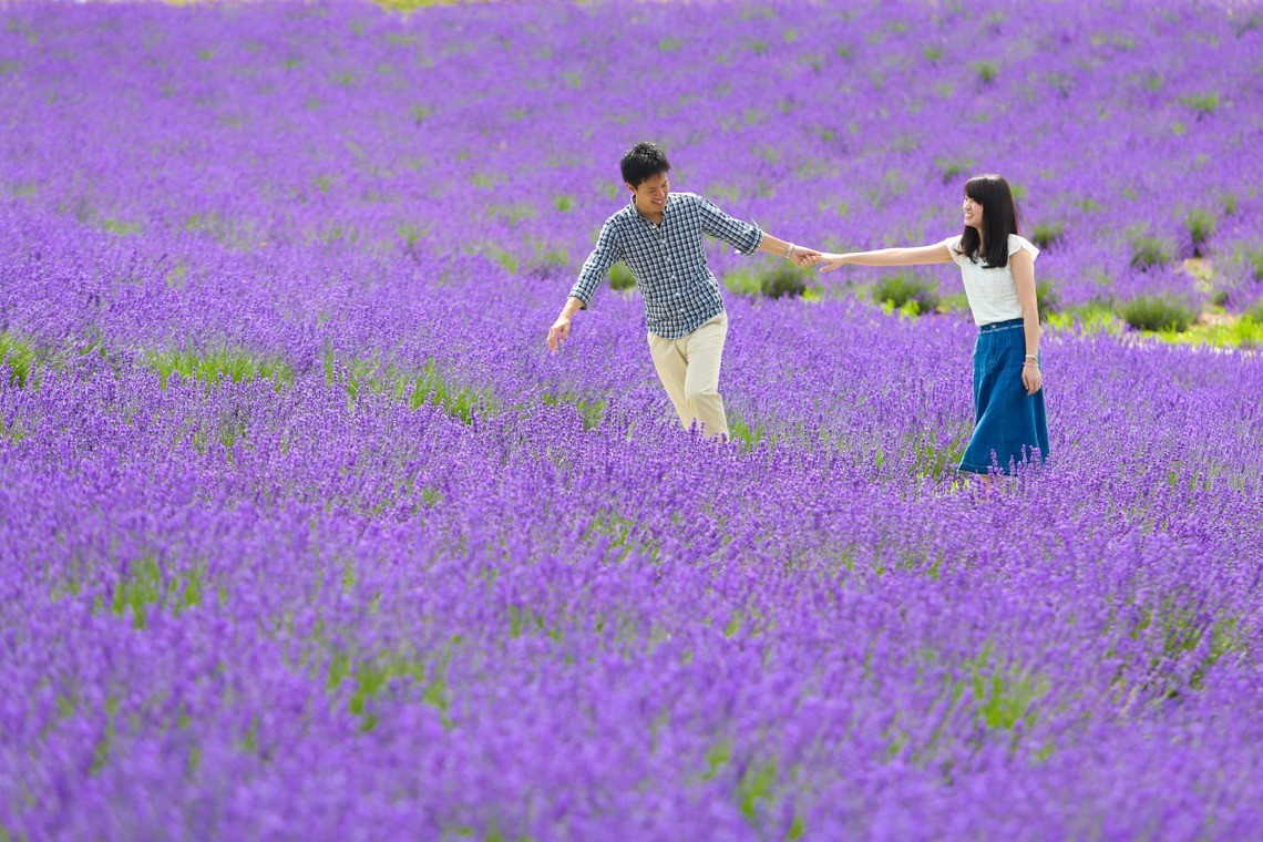 Couple in casual clothes walks in never-ending lavender patch