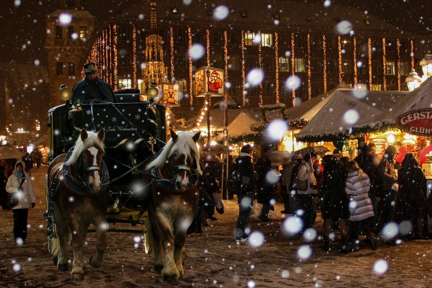 Horse carriage being drawn during the winter. A snowy wonderland.
