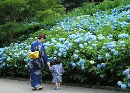 神戸のおすすめ撮影スポット 神戸市より引用